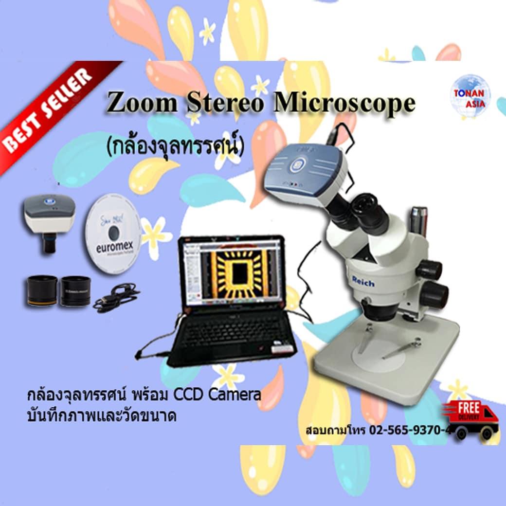 Euromex Zoom Stereo Microscope กล้องจุลทรรศน์ซูมสเตอริโอ